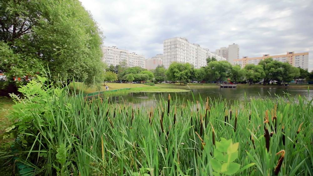 Парк рядом с жилыми домами