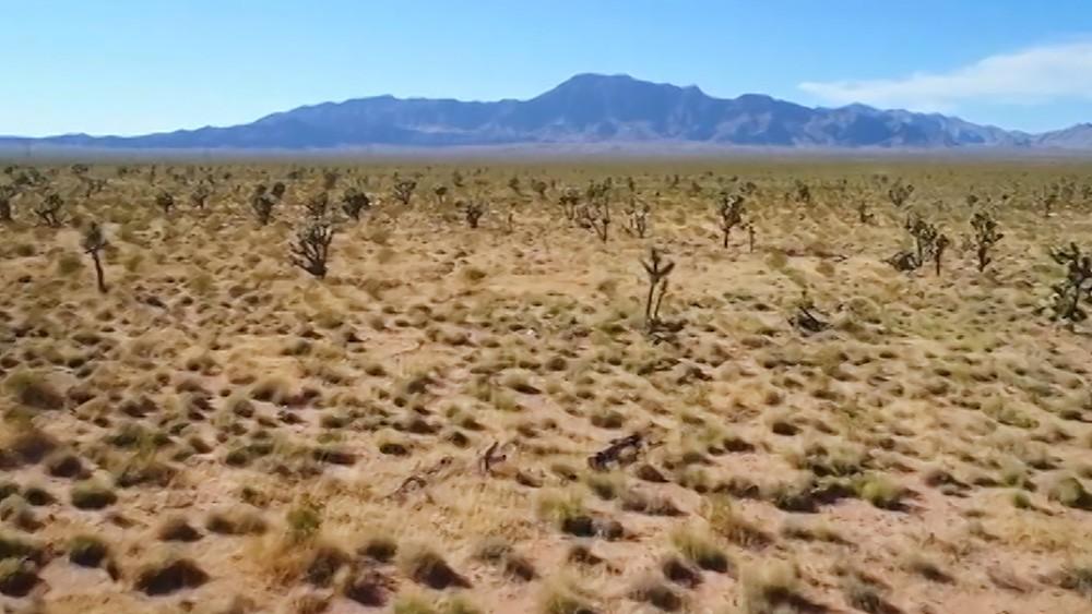 Пустыня Невада