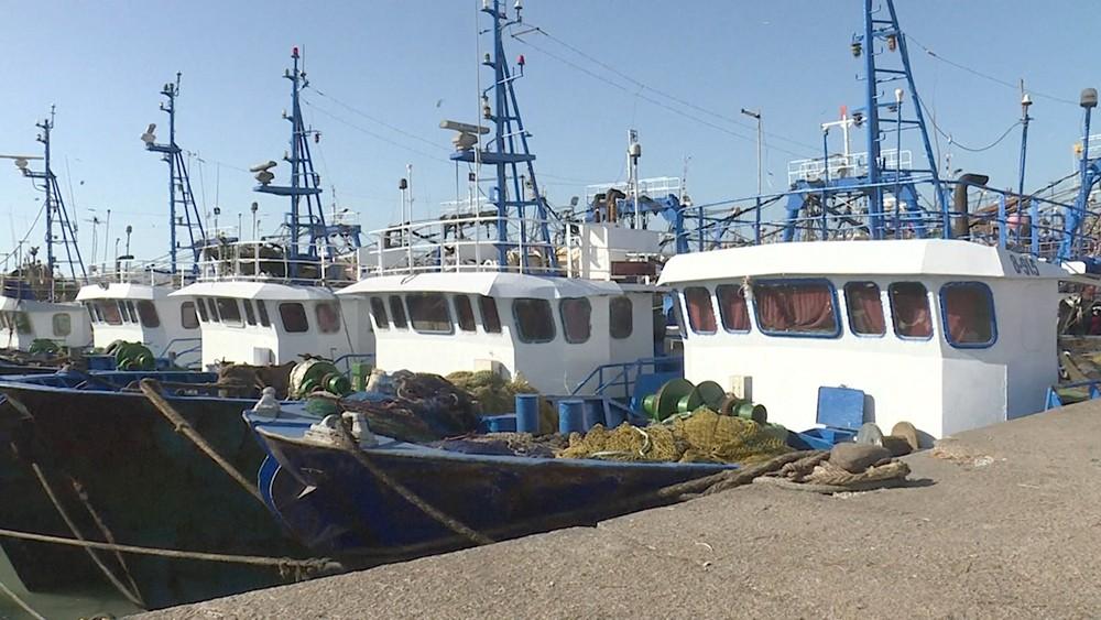 Рыболовные суда