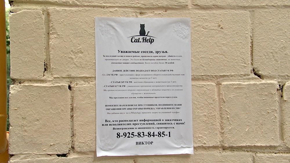 Предупреждение об отравлении животных во дворе