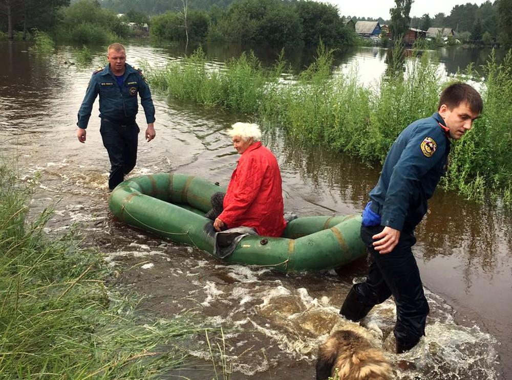 Спасатели МЧС России эвакуируют животных из зоны паводка