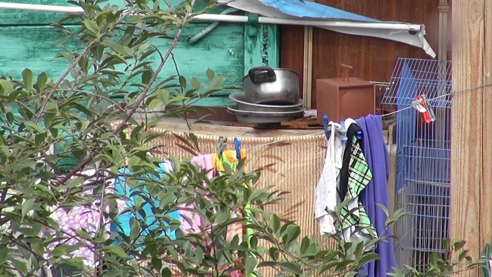 Условия проживания девочки-Маугли