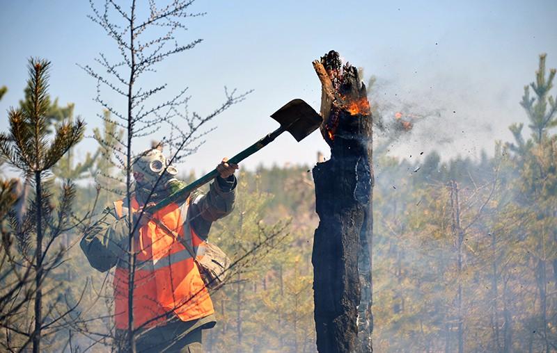 Военнослужащие на месте лесного пожара