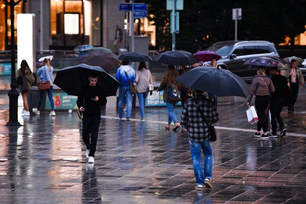 Дождь и сильный ветер