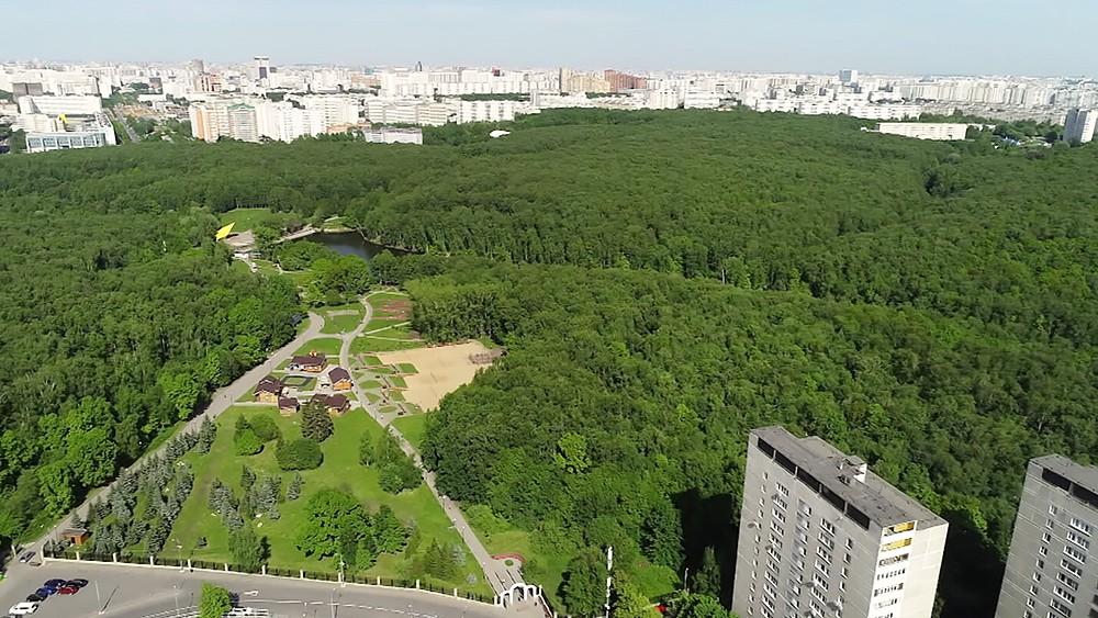 Лесо-парк