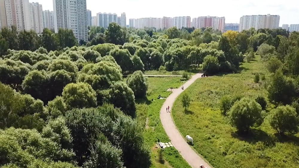 Район Ново-Переделкино