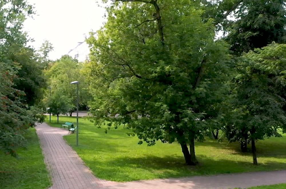 Благоустройство района Коптево