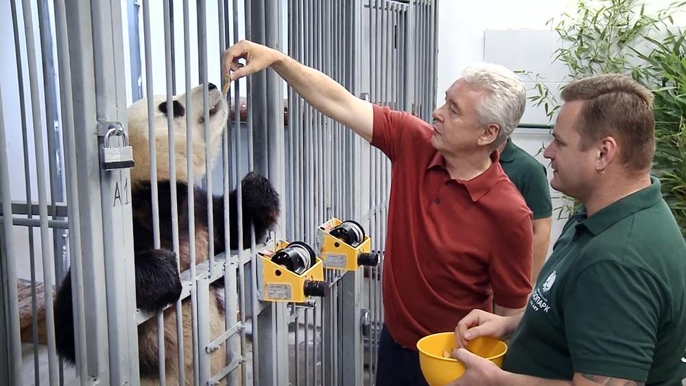 Сергей Собянин в зоопарке