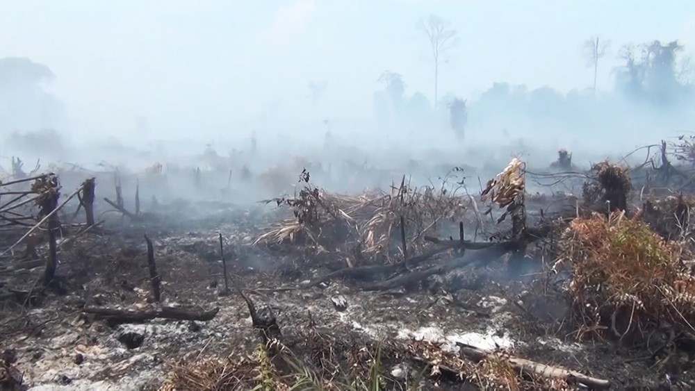 Пожар в Индонезии