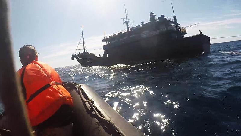 Задержание ФСБ России браконьеров из КНДР в Японском море