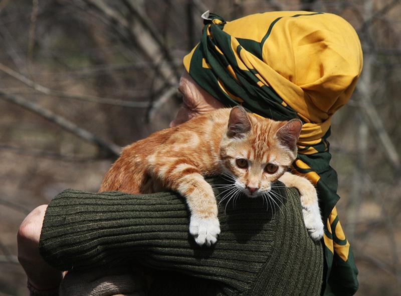 Пенсионерка с кошкой
