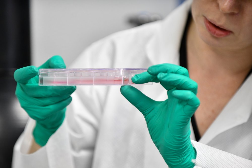 Производство культивированного мяса в лаборатоии