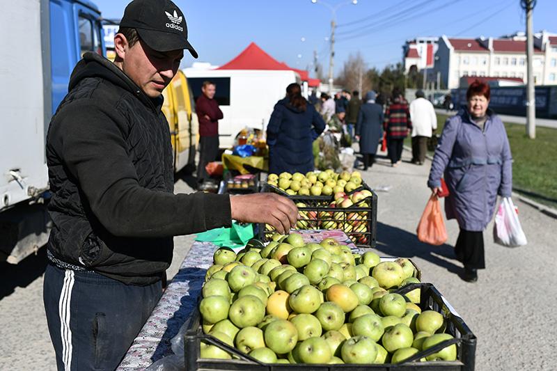 Прилавок с яблоками на сельскохозяйственной ярмарке в Симферополе