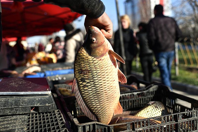 Прилавок с рыбой