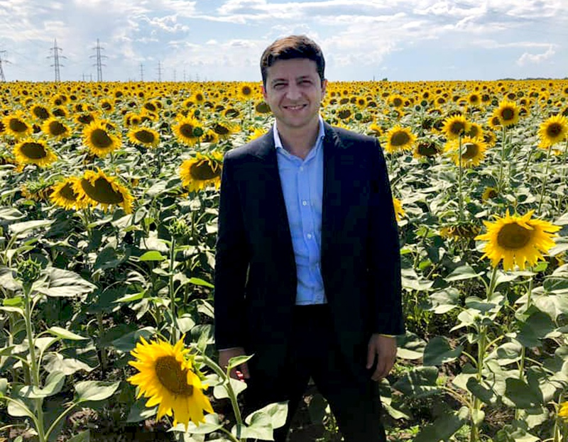 Владимир Зеленский в поле подсолнухов