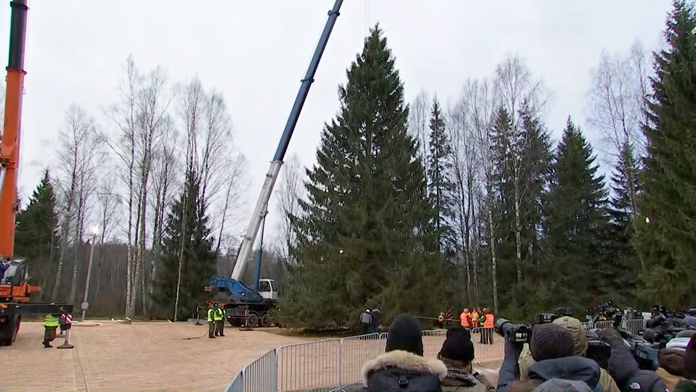 Дровосеки рубят новогоднюю елку