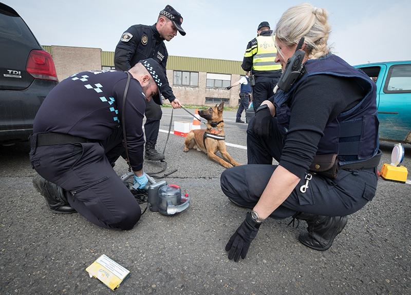 Посылки с бомбами прислали в пять разных фирм в Нидерландах