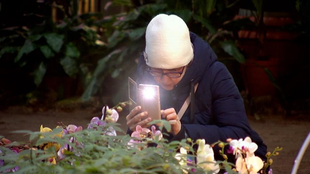 Посетители выставки орхидей