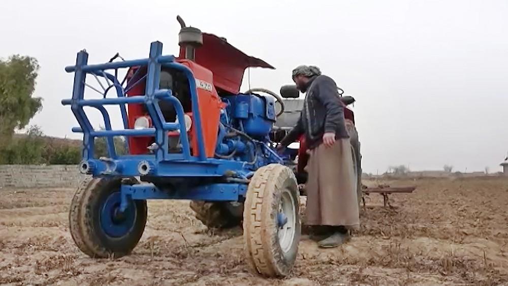 Сельское хозяйство в Сирии