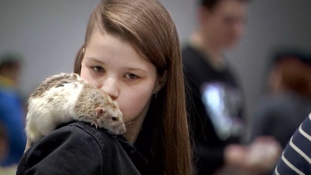 Девочка и крыса