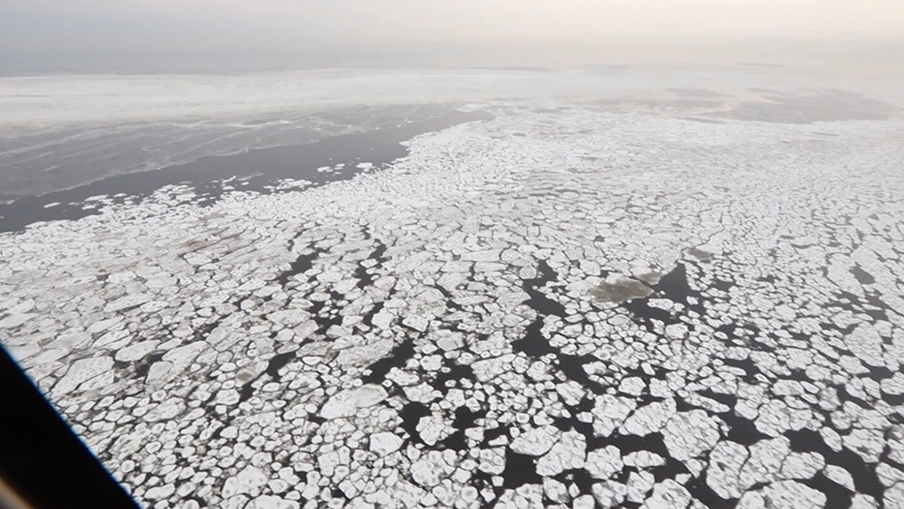 Таенное льдов