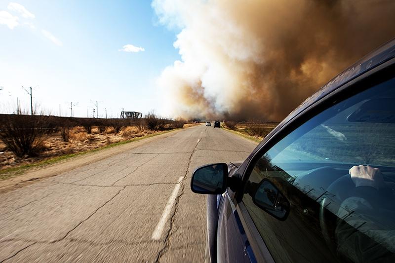 25 гектаров камыша горит в Ростове-на-Дону
