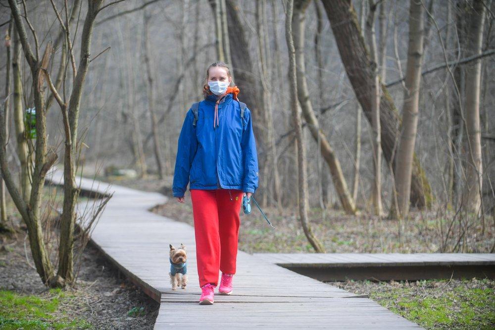 Девушка в медицинской маске гуляет с собакой
