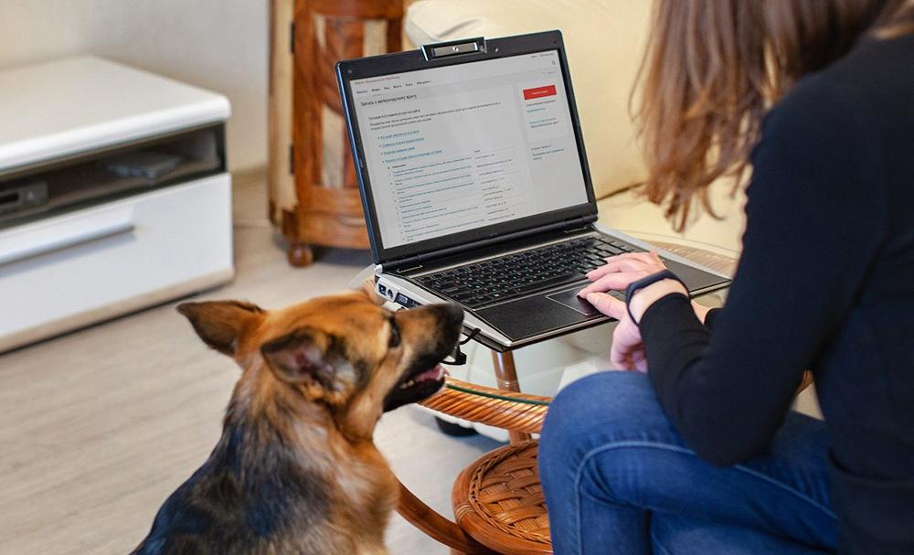 Девушка с  ноутбуком и собакой