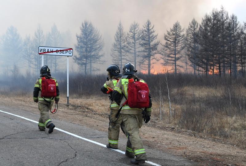 Сотрудники пожарной службы МЧС РФ во время тушения природного пожара