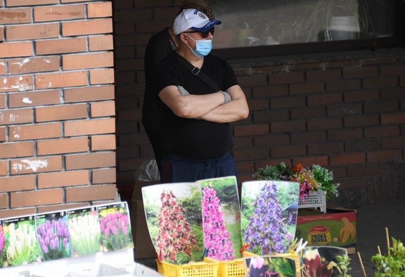 Продавец рассады на одной из улиц в Щелково Московской области