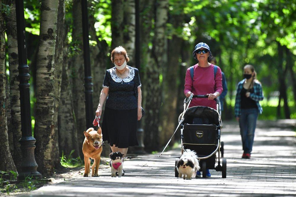 Прогулка по парку