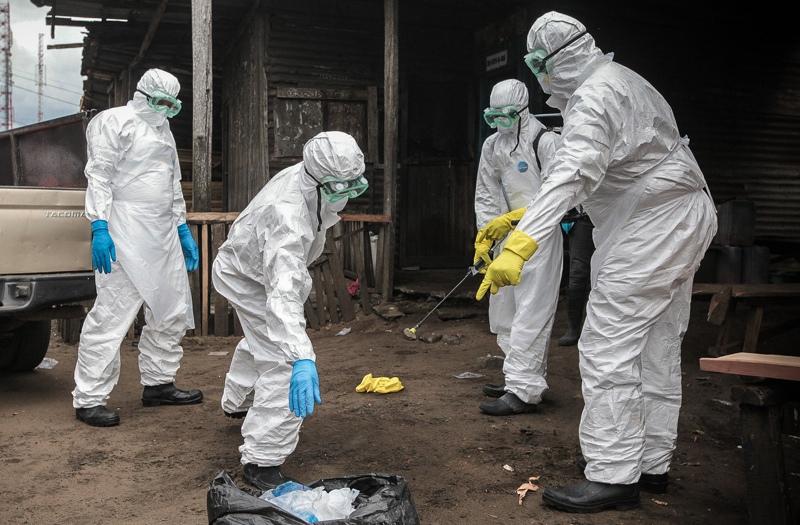 Бубонная чума выявлена в двух странах Азии