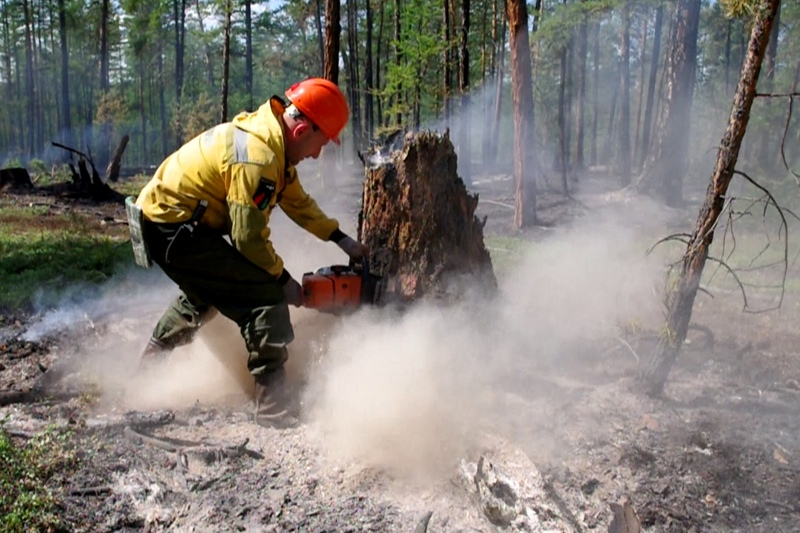 Лесные пожары в Якутии