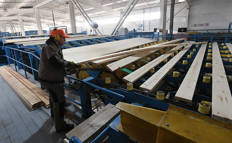 Рабочий на производстве пиломатериалов на заводе