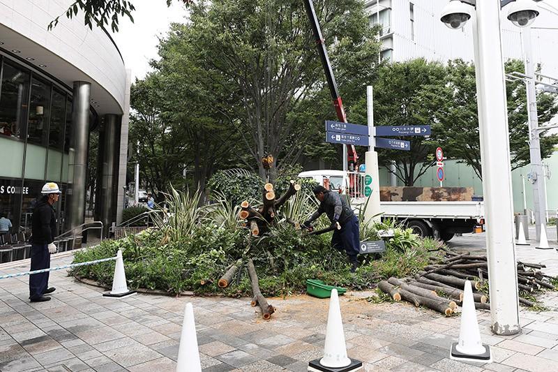 "Тайфун ""Майсак"" в Японии"