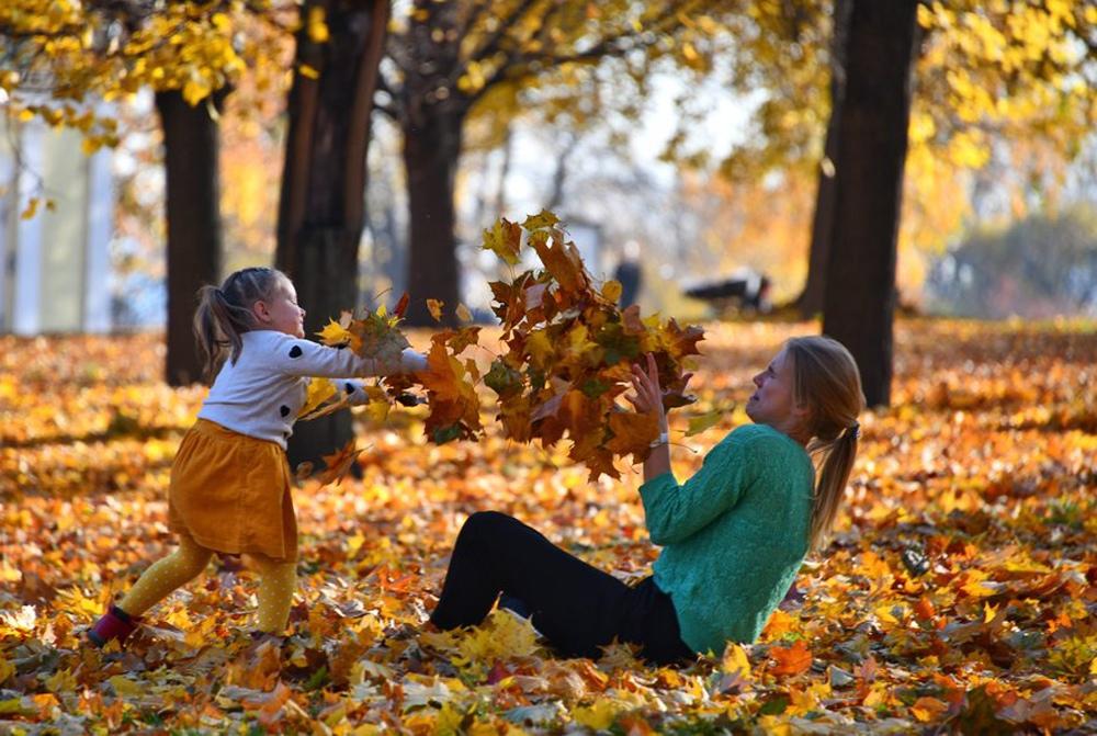 Осенние виды