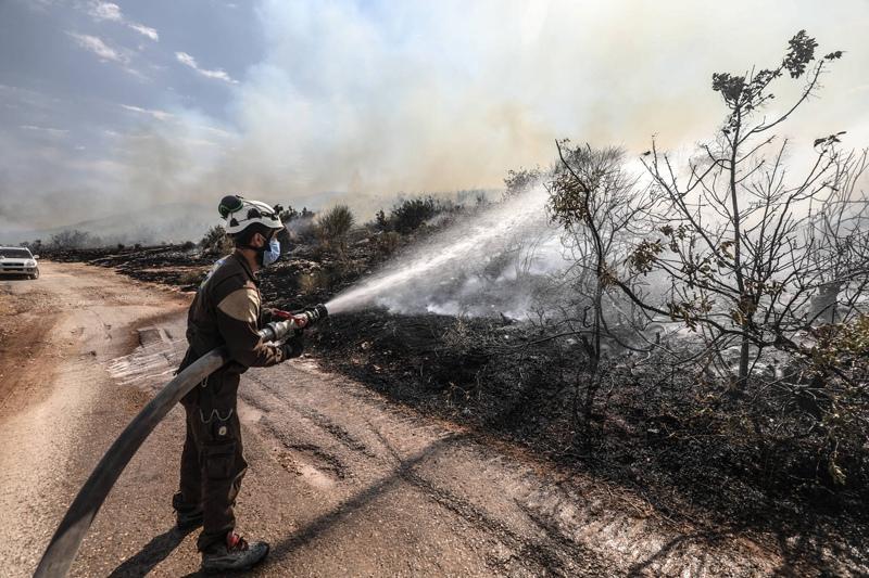 Лесные пожары в Сирии