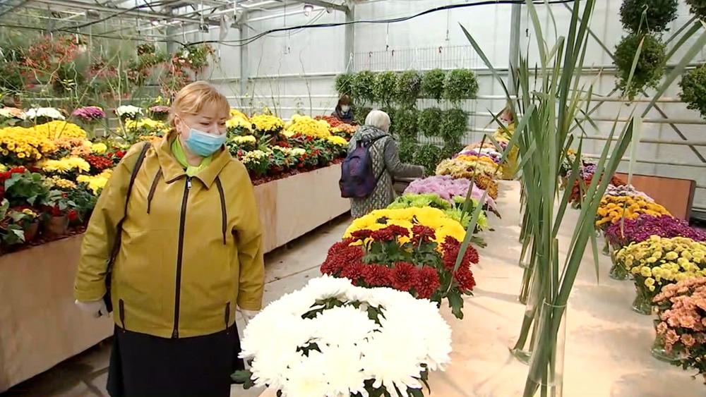 Выставка хризантем