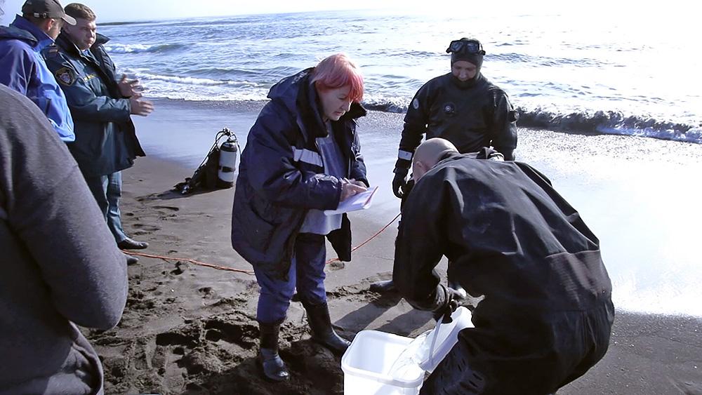 Мониторинг обстановки на побережьях Камчатки