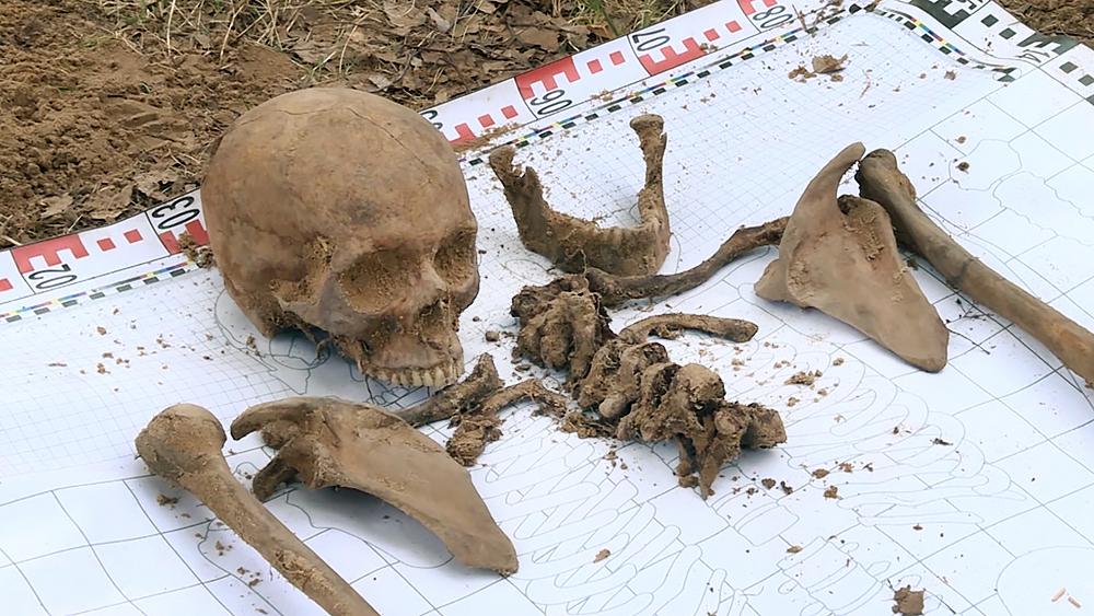 Найденные останки