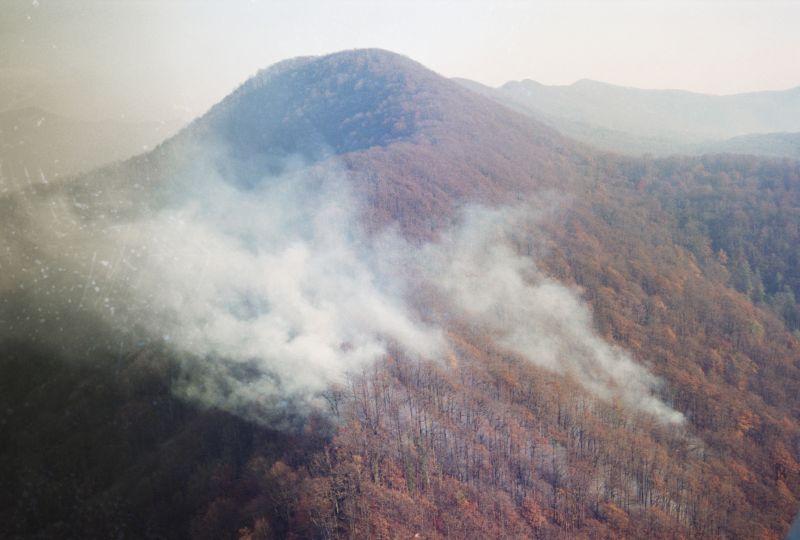 Природные пожары в Сочи