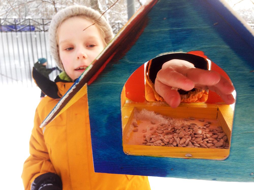 Школьники кормят птиц