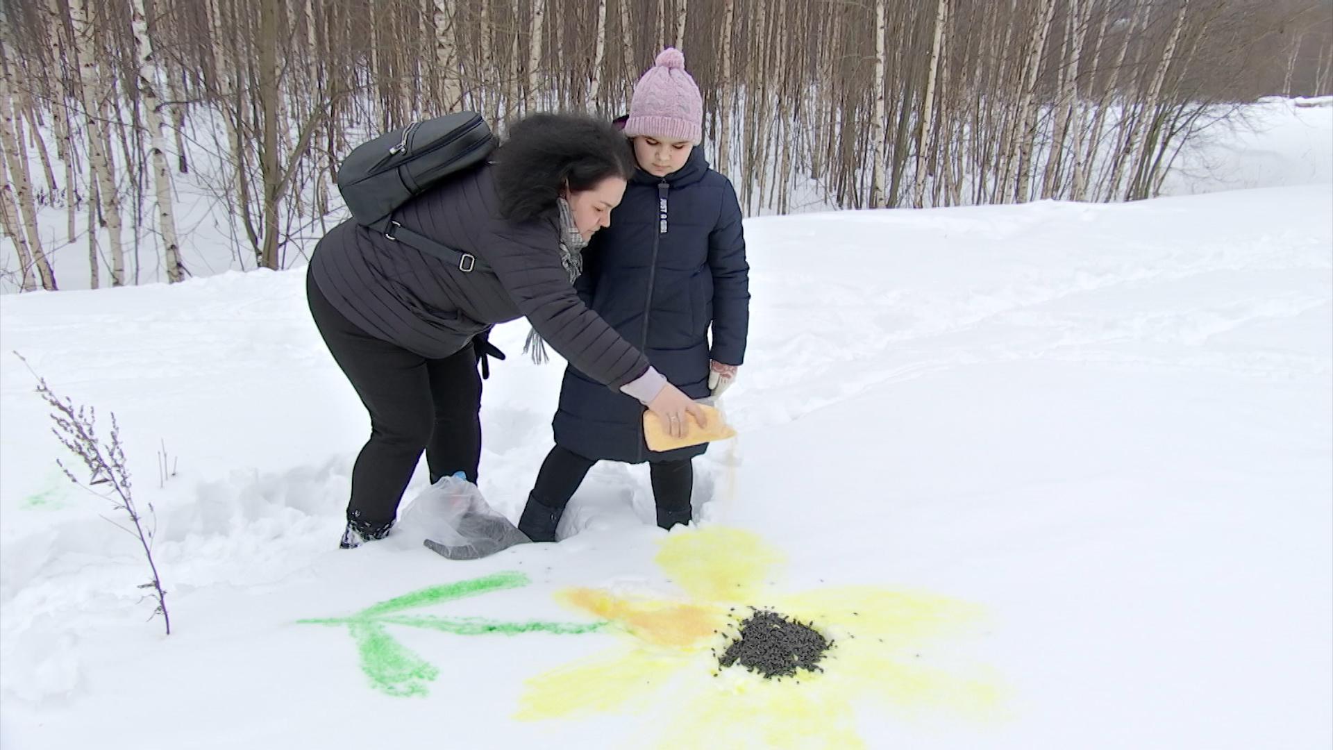 """Творческий фестиваль """"Снежный холст"""""""