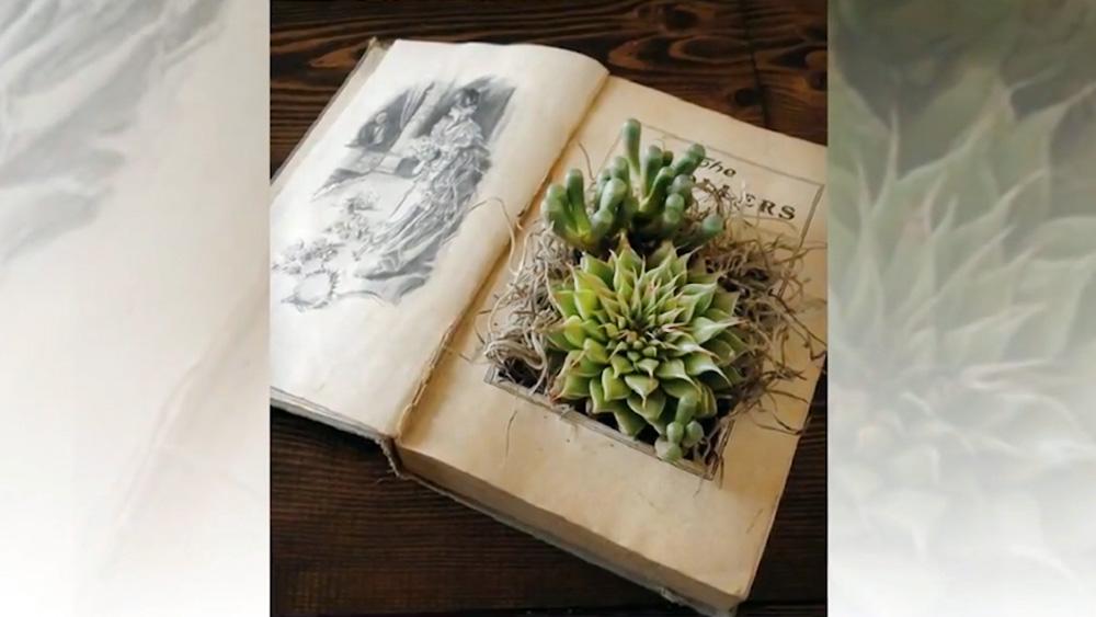 Цветы в книге