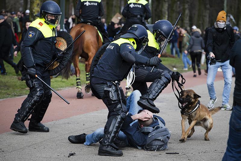 Уличные протесты в Гааге