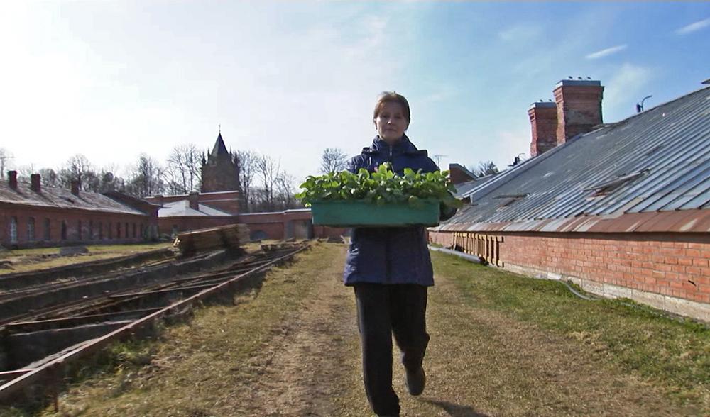 Подготовка Царского села к летнему сезону