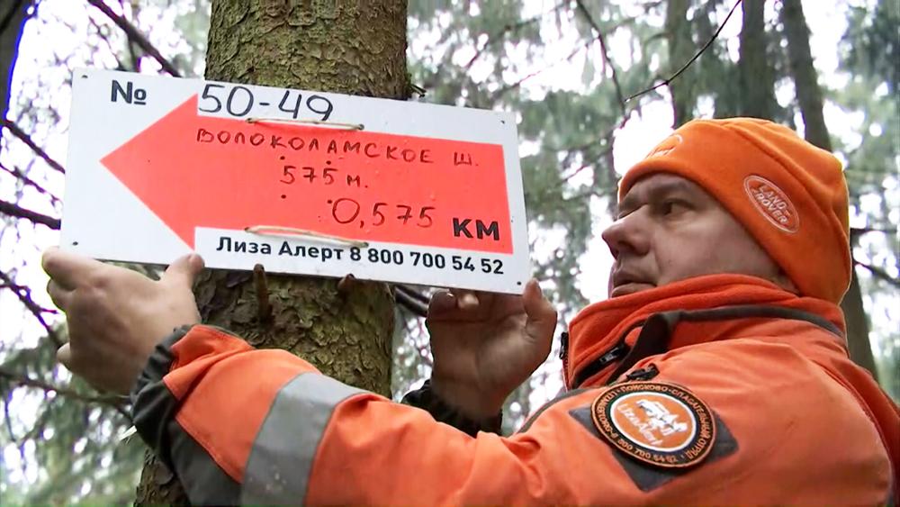 """Установка указателя в лесу. Проект """"Стрелки в лесу"""""""