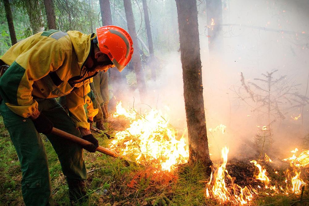 """Сотрудники """"Авиалесоохраны"""" тушат лесной пожар"""