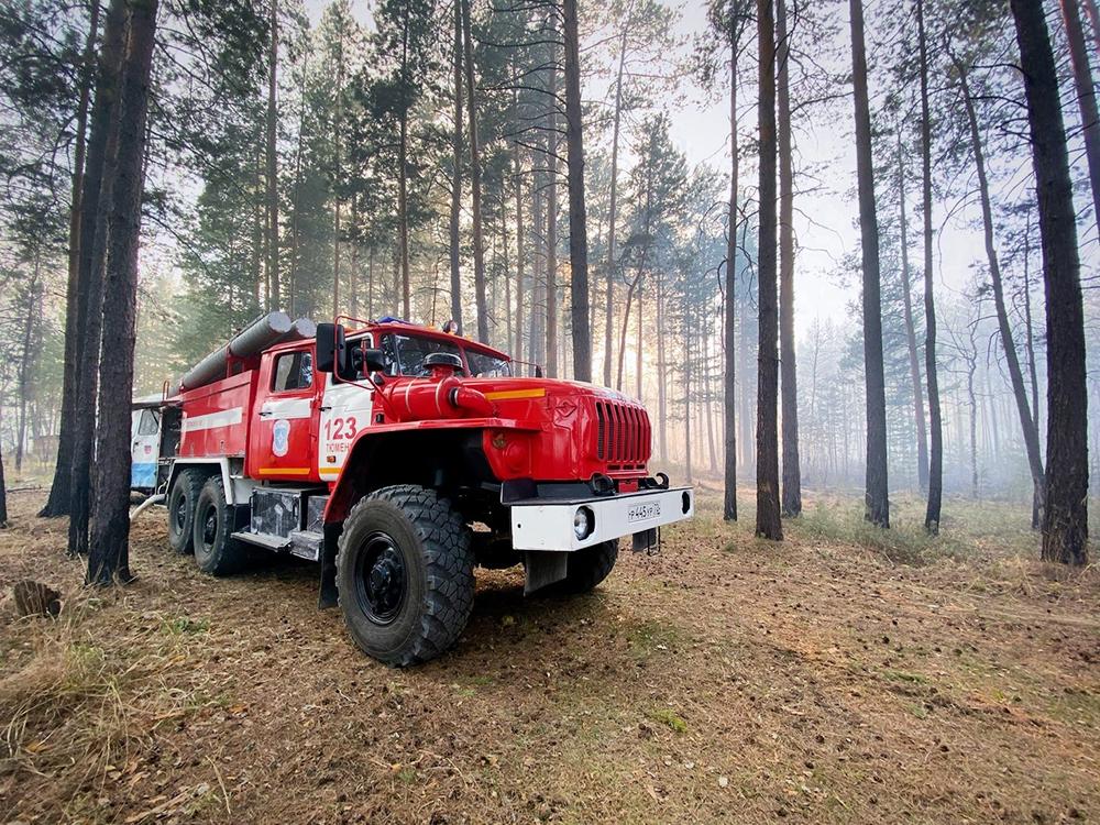 Лесные пожары в Тюменской области