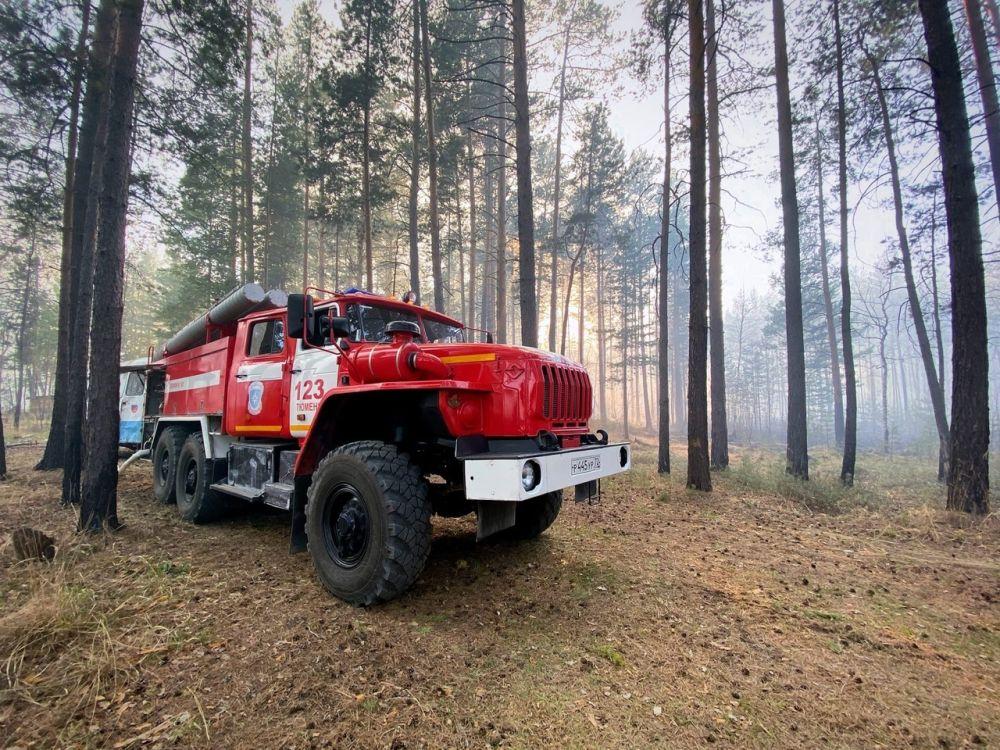 Пожарная машина в лесу